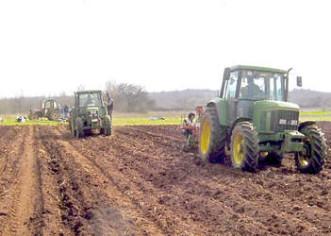 Vrsar: U zakup 115 hektara poljoprivrednog zemljišta