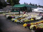 Prodaja cvijeća i cvjetnih aranžmana povodom nadolazećih blagdana