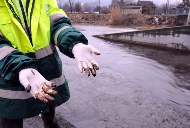 Eko-katastrofa na pomolu: Naftna mrlja prijeti sjevernom Jadranu