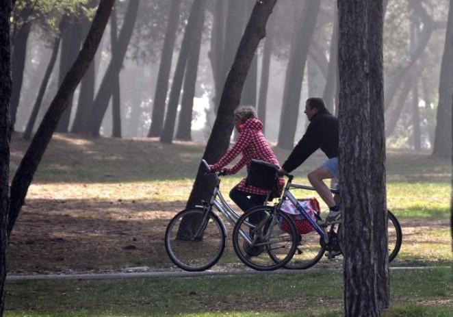 Hrvatske šume: Šumom se može šetati i voziti biciklom kao i do sada