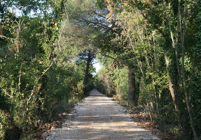 """Trasa """"Parenzane"""" u Poreču očišćena i obogaćena novim sadržajima"""