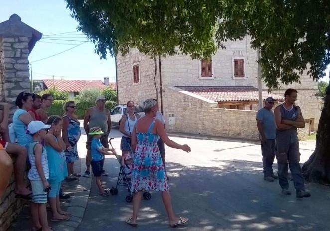 Mještani Vabrige spriječili sječu stogodišnje ladonje