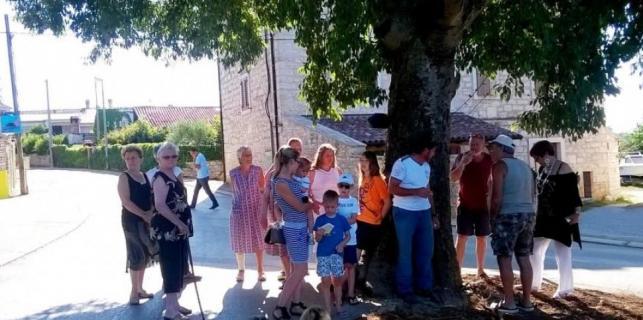 Vabriga: protiv sječe ladonje više od 200 potpisa mještana !