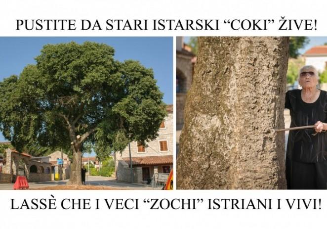 """Tar-Vabriga: """"Pustite da stari istarski coki žive"""""""