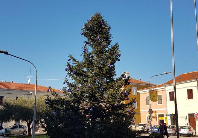 Postavljena božićna jelka na trg Joakima Rakovca