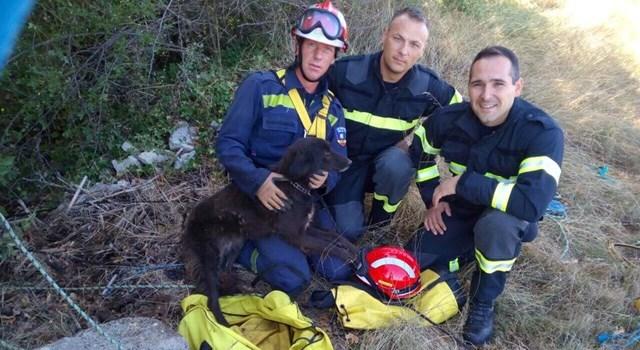 Porečki vatrogasci spasili psa iz jame duboke 20 metara
