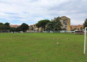 Priopćenje za javnost HNS-a povodom poništenja natječaja za prodaju Starog nogometnog igrališta