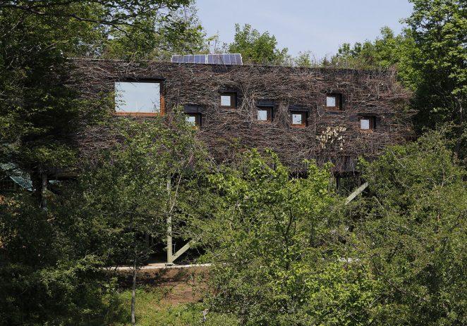 U Parku prirode Učka izgrađeno hranilište za bjeloglave supove s promatračnicom