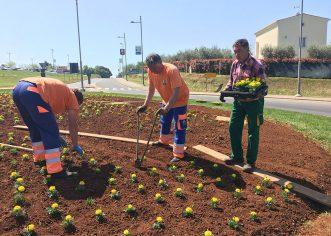 Krenulo uređivanje cvjetnih gredica za svježiji izgled grada