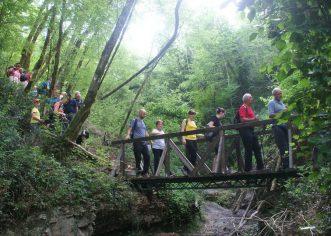 U nedjelju se u Pazinu i Grdoselu održava 22. međunarodni dan pješačenja Istarske županije