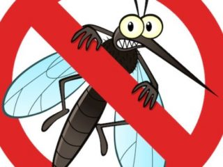 dezinsekcija-komaraca