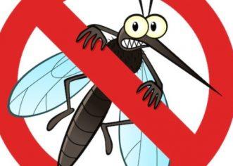 Dezinsekcija komaraca na području Općine Tar-Vabriga u noćnim satima 15. kolovoza