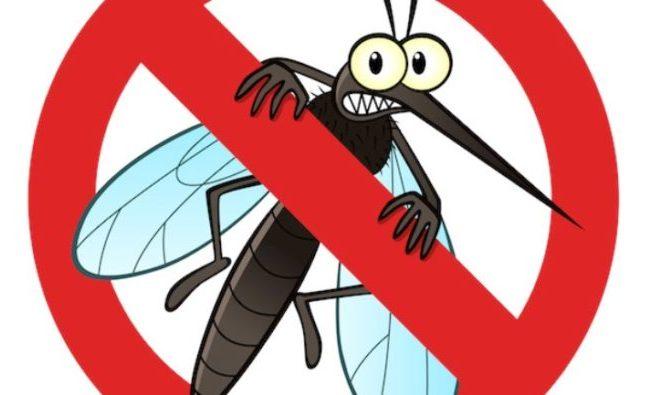 Obavijest o dezinsekciji komaraca u Funtani 30./31. svibnja