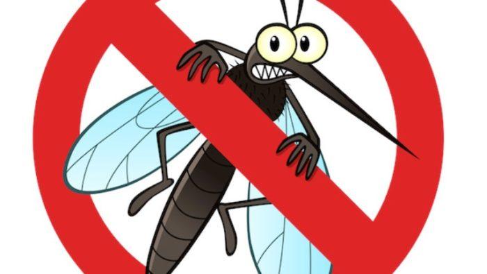 Na području Grada Poreča od idućeg tjedna započinje zaprašivanje komaraca