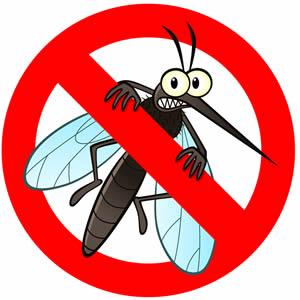 Treća ljetna akcija zaprašivanja komaraca na području Poreča i porečkih naselja