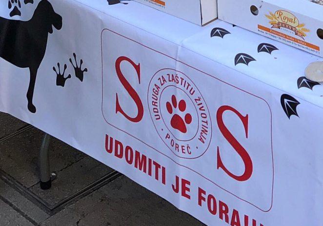 Porečka udruga za zaštitu životinja SOS Šape u subotu 22. prosinca održava Slatki štand za naše šapice