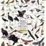 ugrozene-ptice