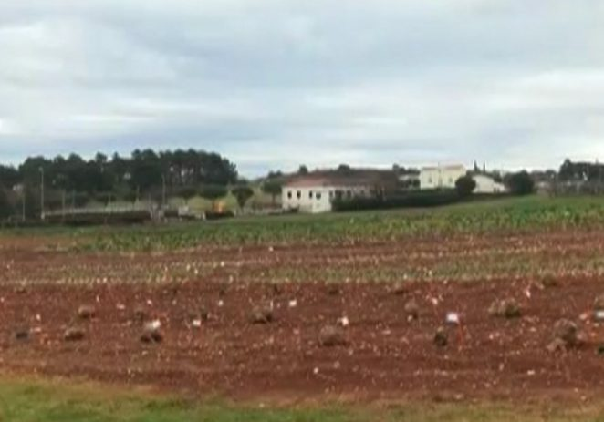 U Poreču održana edukacija o biodinamičkoj poljoprivrednoj proizvodnji