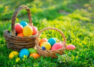 Dodjela poklon paketa umirovljenicima Funtane prigodom uskršnjih blagdana u srijedu, 17. travnja