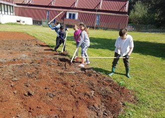 Tjedan botaničkih vrtova u Osnovnoj školi Poreč