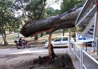 Olujno nevrijeme u nedjelju navečer pogodilo Poreč i prouzročilo veću materijalnu štetu, nema ozlijeđenih