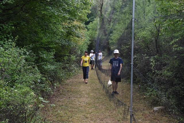 Tradicionalni ornitološki kamp od 18. kolovoza do 4. listopada u Parku prirode Učka