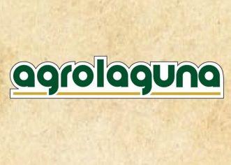 Agrolaguna d.d. iz Poreča poziva sve maslinare zbog otkupa ploda maslina