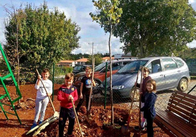 U Poreču podijeljeno i posađeno više od 500 stabala u sklopu nacionalne akcije Kolektivna sadnja drveća