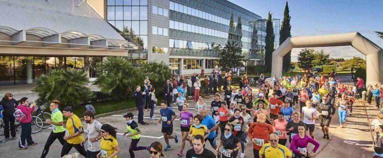 Novigrad-Cittanova Run (1)