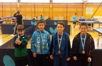 Paolo Pulić iz Vrsara osvojio 1. mjesto na regionalnom stolnoteniskom turniru za klinceze i klince