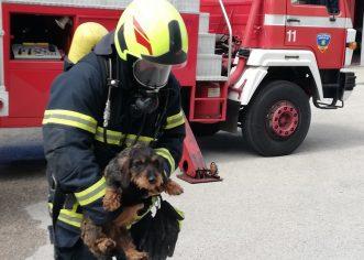 Valamar Riviera pomogla radu Javne vatrogasne postrojbe – Centra za zaštitu od požara Poreč