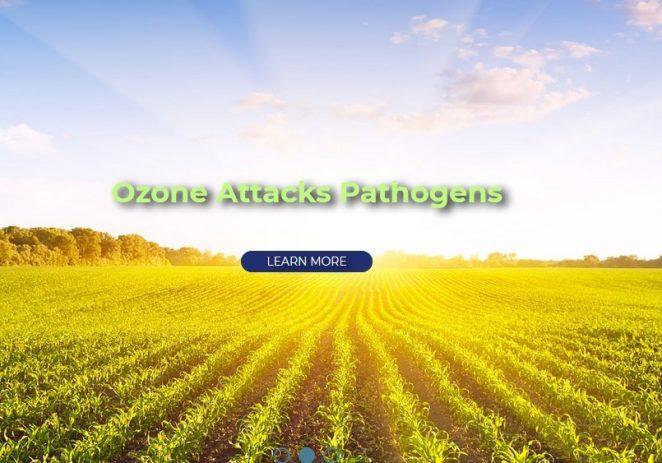 Dezinfekcija ozonom dostupna i u Poreču !