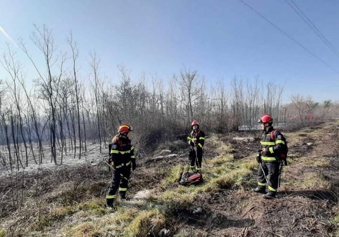 Jučer u Istri četiri požara trave i niskog raslinja