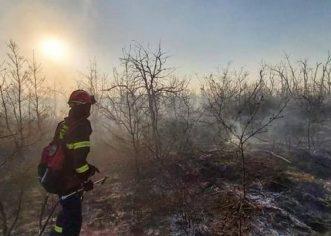 Vatrogasci JVP POREČ apeliraju – spriječimo požare!
