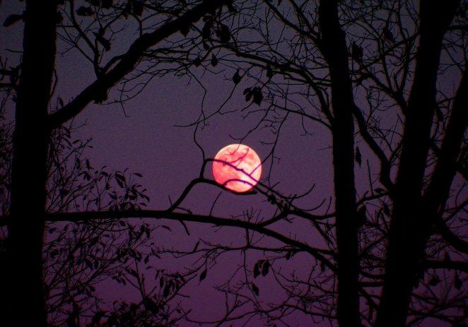 Mjesec će večeras biti najsjajniji ove godine