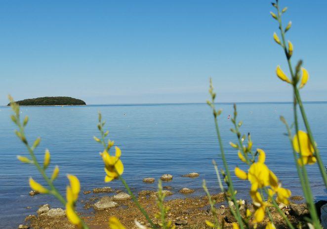 Od 18. do 22. svibnja obavljeno je prvo mjerenje kakvoće mora za kupanje na morskim plažama u Istarskoj županiji