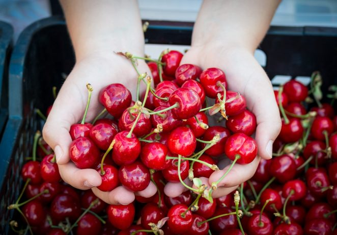 U nedjelju 24.5.2020. se održava prvi ovogodišnji Kaldirski plac od fruti !