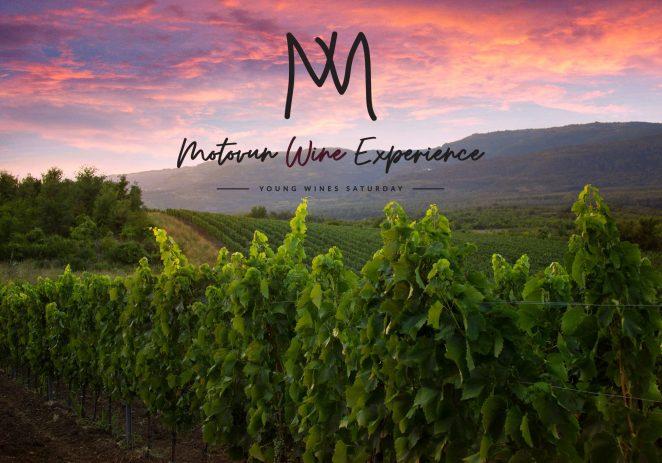 Ove subote Motovun Wine Experience – upoznajte motovunske vinarije i uživajte u mladim vinima