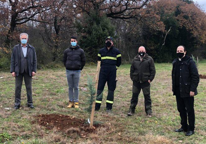 """U akciji """"Zasadi drvo, ne budi panj"""" simbolično posađeno pet stabala u Kašteliru"""