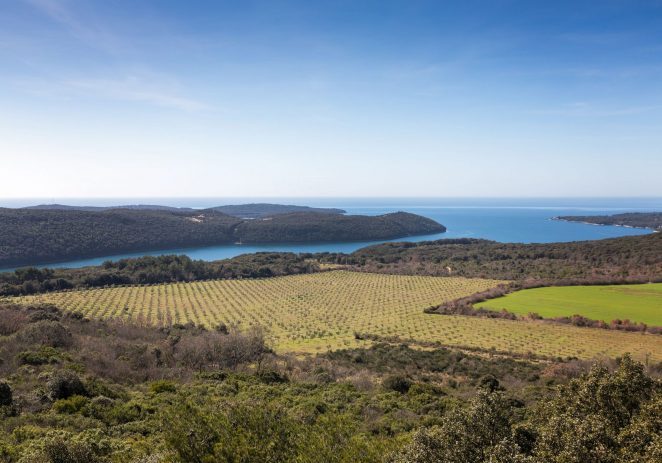 """Sustavna valorizacija šireg područja Limskog zaljeva kroz EU projekt """"KLIM Kontija-Limski zaljev – Održivo upravljanje zaštićenim područjima"""""""