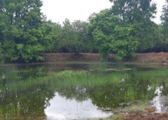 Nastavlja se čišćenje dvadesetak lokvi na porečkom području, za smanjenje poplava i očuvanje bio raznolikosti