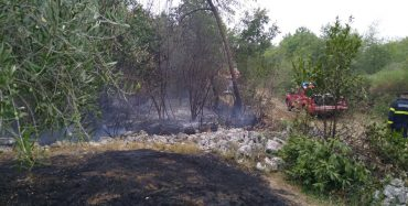 Ugašen požar šume i niskog raslinja kod Labinci u srijedu – izgorjelo cca 2ha niskog raslinja i šume